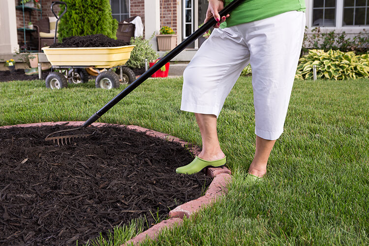 lawn and garden cleanup yard maintenance landscaping stratford ontario
