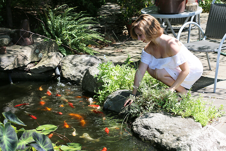 Spring Clean Your Pond or Water Feature
