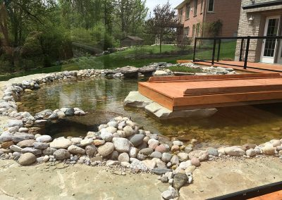 Large above-ground koi pond built by A Touch of Dutch Landscaping