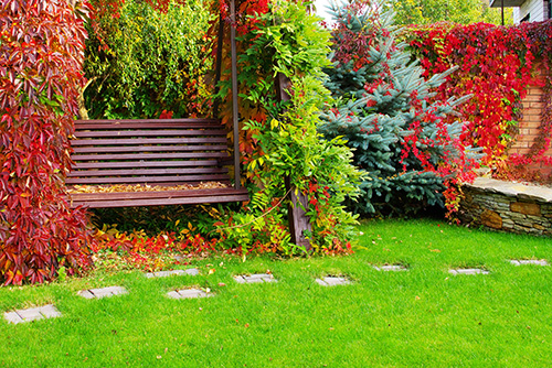 Add fall colour to garden