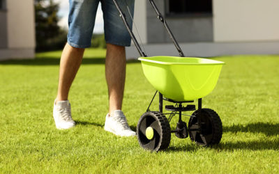 Lawn Care 101 – Fertilizing