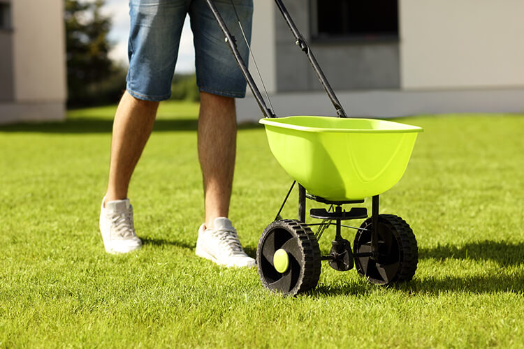 Fertilizing Lawn Care Maintenance Stratford St. Marys Landscaping DIY A Touch of Dutch Landscaping
