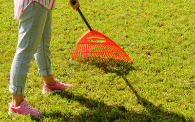 Lawn Care 101 – Raking