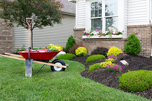 increase curb appeal lawn care edging pruning trimming weeding landscaping