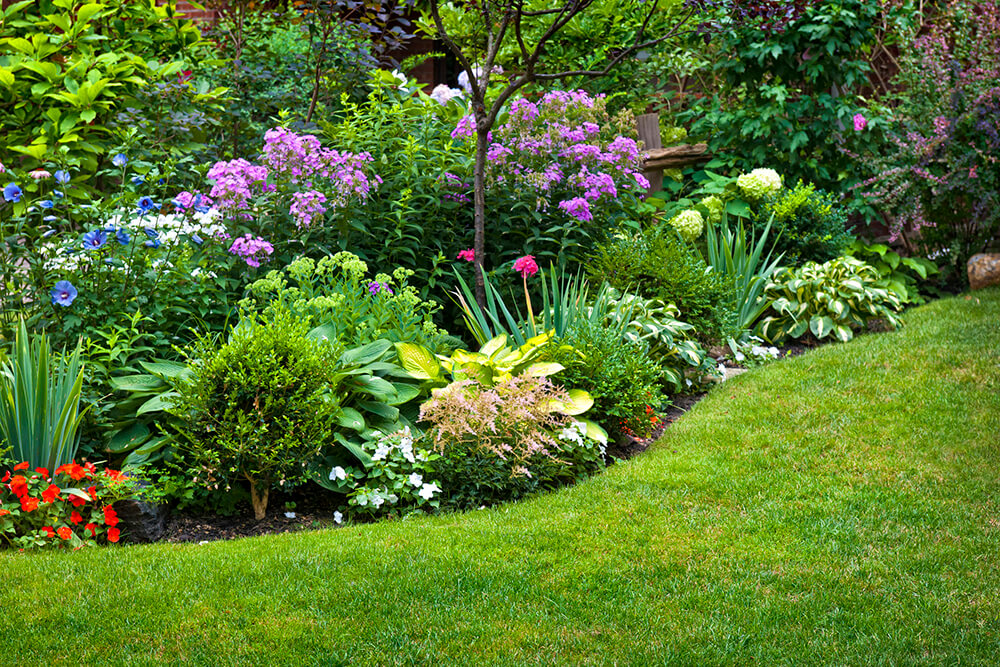 Traditional landscaping with native plants